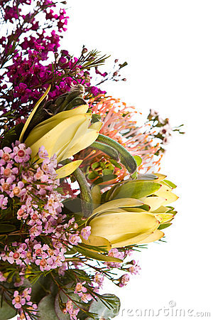 Free Australian Native Flower Bouquet Royalty Free Stock Photo - 6728445