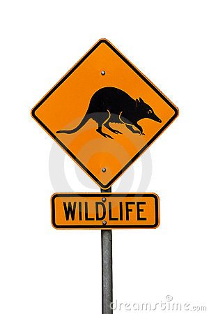 Australian native wildlife roadsign