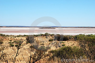Australian Salt Lake and spinifex grass Editorial Photo