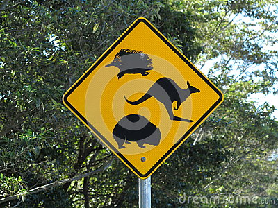 Road sign Australian wildlife