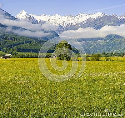 Austria - Mountains
