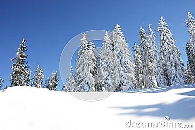 Austria / Winter