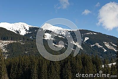 Austrian Alpine Scene