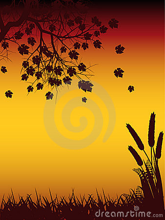 Free Autmun Tree And Corn Silhouette Stock Images - 19935384