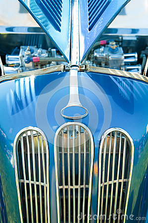 Auto grille