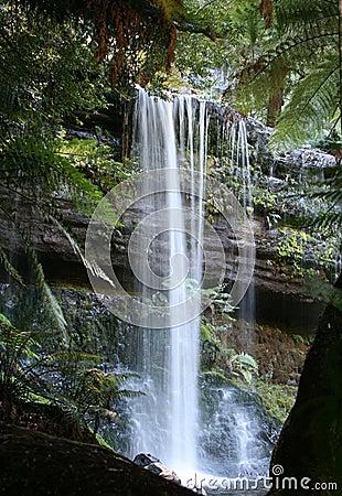 Automnes de Russell, cascade à écriture ligne par ligne de forêt tropicale