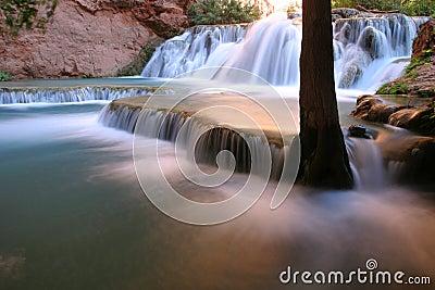 Automnes le long de crique de Havasu, Arizona