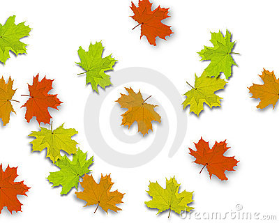Autum Background