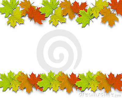 Autum Background leaves