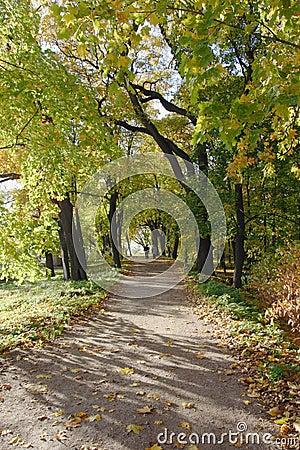 Autum park