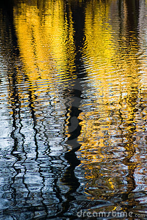 Autum reflection in water