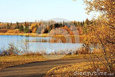 Autumn łosia wyspy widok jeziora