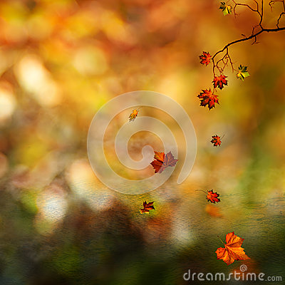 Autumn, abstract natural background