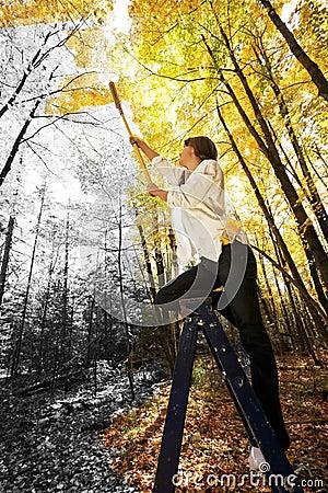Autumn Acrylics