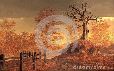 Dead Tree in Autumn Stock Photo