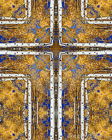 Free Autumn Aspens Cross Stock Photo - 1792970