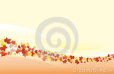 Autumn background - landscape