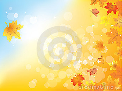 Autumn background with leaves  / eps10
