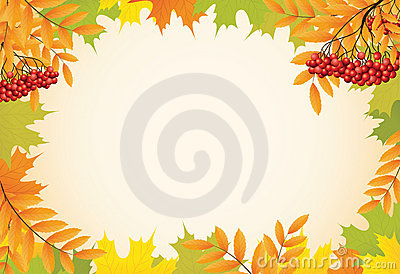 Autumn background with maple leaves and rowanberry