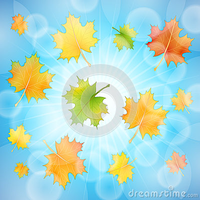 Autumn background sky