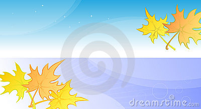 Autumn banners or poster with yellow maple leaves.