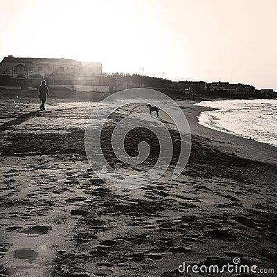 Autumn beach