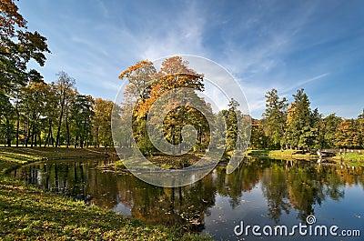 Autumn in the beautiful park
