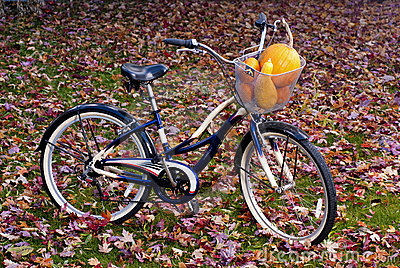 Autumn bicycle with a basket full of squash