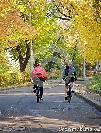 Autumn bicyclists