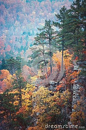 Autumn bluff