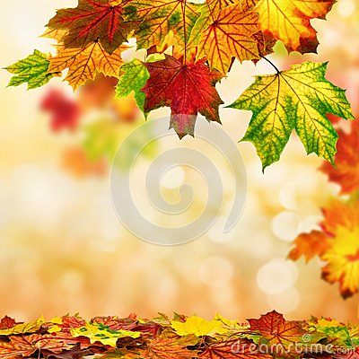 Free Autumn Bokeh Background Bordered With Leaves Stock Photography - 34043472