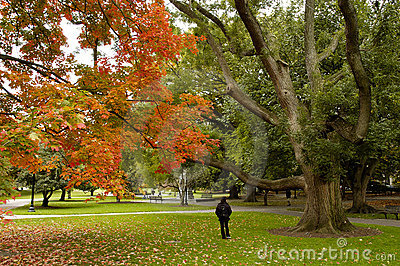Autumn at Boston Common