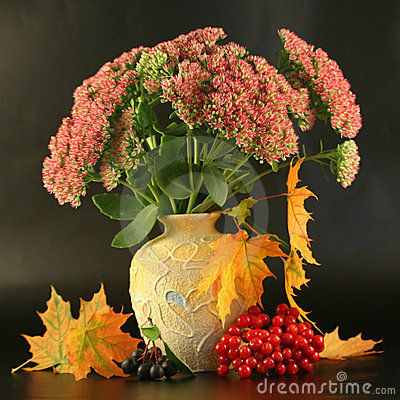 Free Autumn Bouquet Royalty Free Stock Photography - 3176257