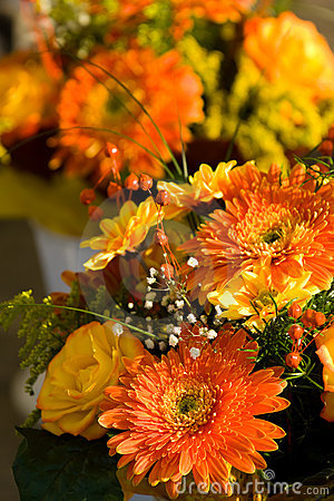 Free Autumn Bouquet Royalty Free Stock Image - 3264406