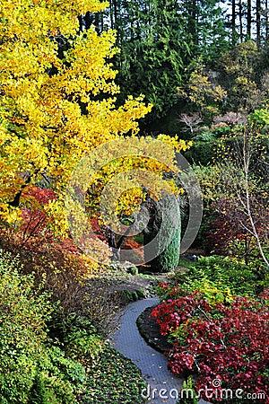 Free Autumn Butchart Gardens Royalty Free Stock Photos - 7236468