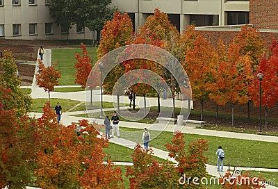 Autumn on Campus