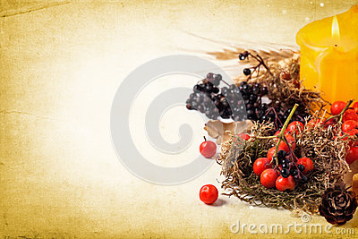 Autumn card with berries