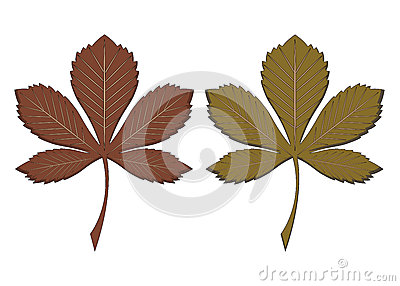 Autumn Chestnut Leaves