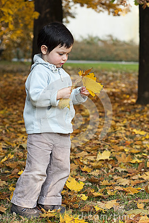Autumn child in park