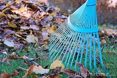 Autumn cleaning