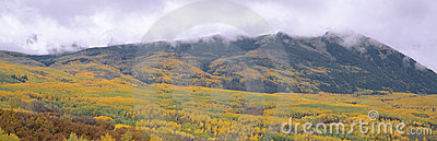Autumn clouds at Kebler Pass,