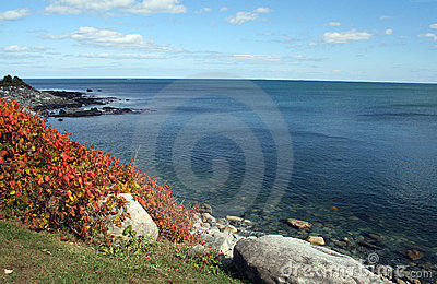 Autumn Coastline