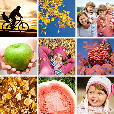Free Autumn Collage Royalty Free Stock Image - 21016216