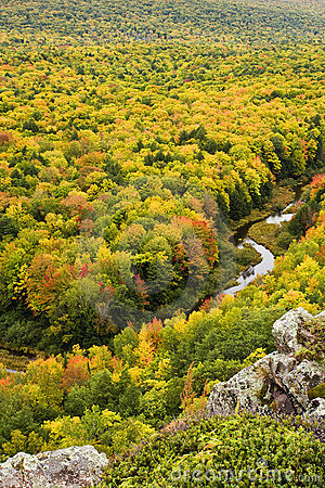 Free Autumn Color In Michigan Upper Peninsula Royalty Free Stock Photo - 11365725