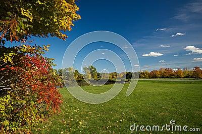 Autumn color landscape
