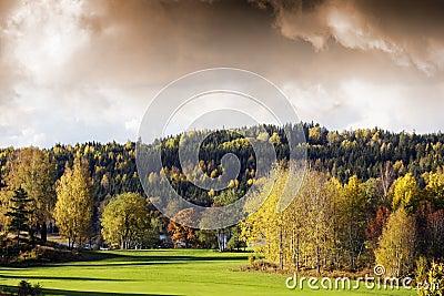 Autumn colored landscape