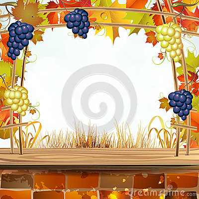 Autumn colorful leaves with grapes