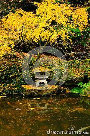 Autumn colors in a garden