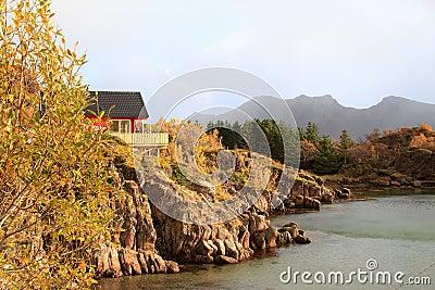 Autumn  colors of Lofoten