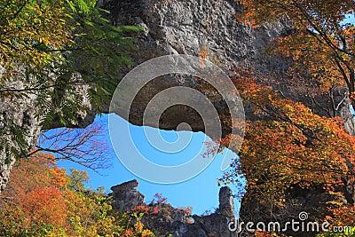 Autumn colours of crag